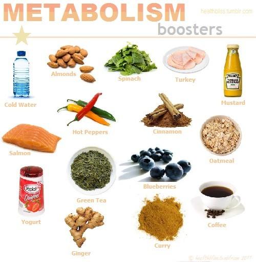 basal metabolic rate machine